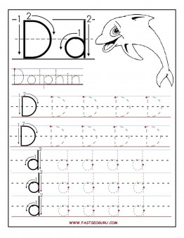Letter D Worksheet For Preschool