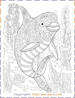 Dolphin colouring pages for adults