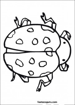 Ladybugs Coloring Pages printable