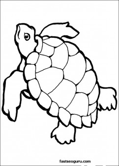 turtle ocean coloring page printable
