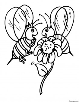 Free Printabel coloring pages animal bee