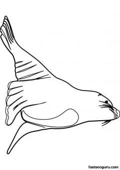 Printable Ocean Sea lion coloring page for kids
