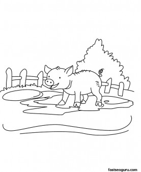 Printable Farm animal  Baby pig Coloring page for kids