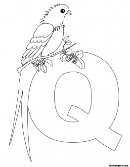 Printable Animal Alphabet worksheets Letter Q for Queen Whydah