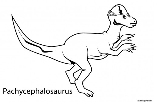 Printable dinosaur pachycephalosaurus coloring in sheets