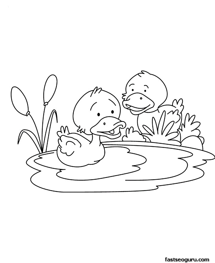 Printable baby duck coloring page for childrens for Baby duck coloring pages