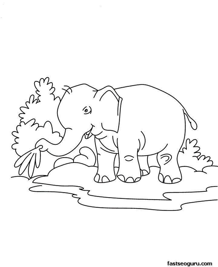 Printable jungle animal Baby elephant Coloring page for kids