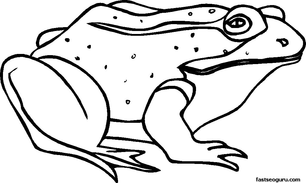 Free Printable Sick Frog coloring