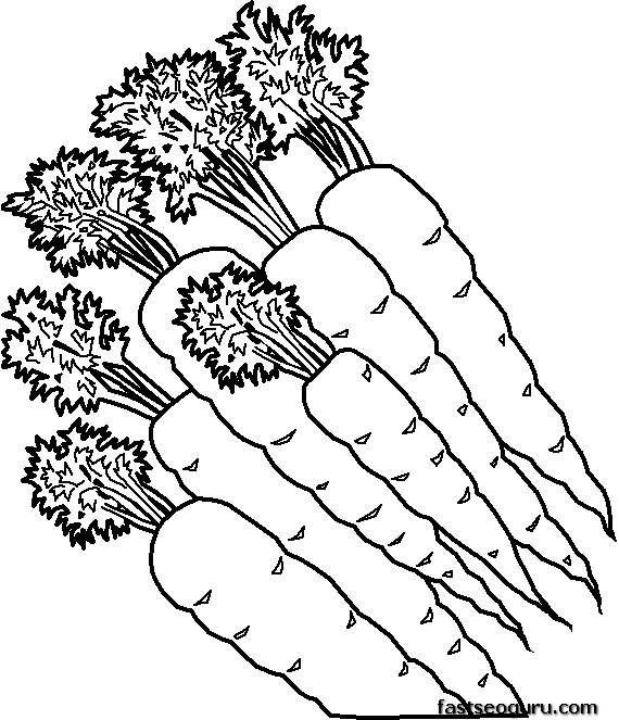 Printable vegetable Carrots coloring