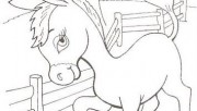 Printable farm baby donkey coloring pages