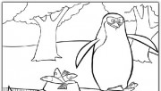 Penguin madagaskar 3 coloring pages
