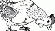 Print out Farm chickens Eating dinner coloring page