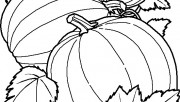 Printable Vegetables Pumpkins coloring pages