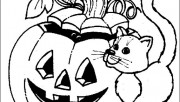 Halloween pumpkins and cat coloring page