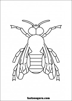 Bee insect coloring pages printable