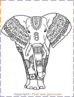 coloring pages for adults elephant print out