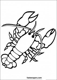 crab roe ocean print out coloring kids