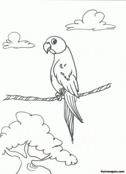 Parrots  bird Printable coloring pages for kids