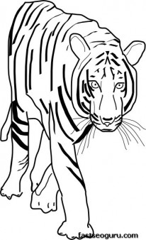 Printable coloring pages jungle Bengal Tigers