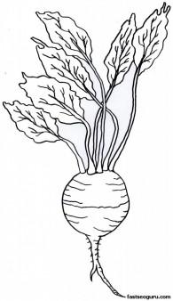 Printable Vegetable Turnip Coloring Page
