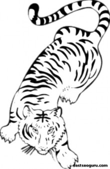 Printable jungle Bengal tiger Coloring Pages for Kids