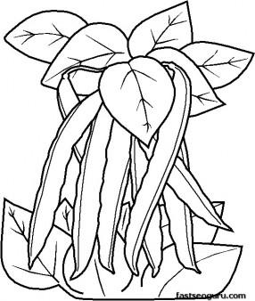 Printable vegetable Peas coloring page