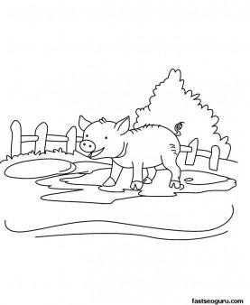 Printable Farm animal  Baby pig Coloring page for kids