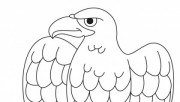 Printable animal eagle co…