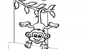 Printable monkey doorknob…