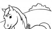 coloring pages Animal Bea…