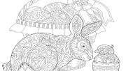 coloring pages easter bun…
