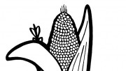 Printable vegetable Corn …